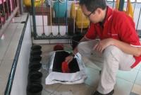 https://www.teachforindonesia.org/wp-content/uploads/2013/04/IMG_0376.jpg